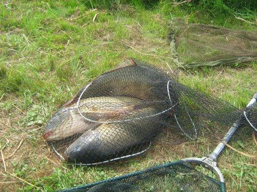 урочище краськово рыбалка